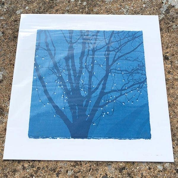 Anna Harley Moon Fruit II unframed mini print2